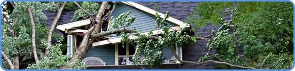 Insured property damaged by wind
